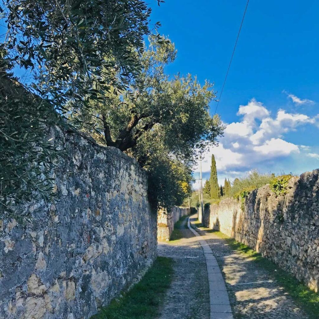 Verona, colline ricche di storia e sentieri nascosti per emozioni uniche